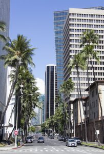 The view of straigh street with tall palms in Honolulu downtown (Hawaii).